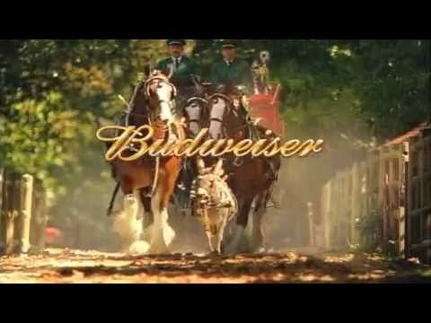 Budweiser 9 11 Clydesdale Commercial