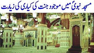Video Riaz Ul Jannah Ki Ziarat | Masjid e Nabvi | Hashtag MP3, 3GP, MP4, WEBM, AVI, FLV September 2019