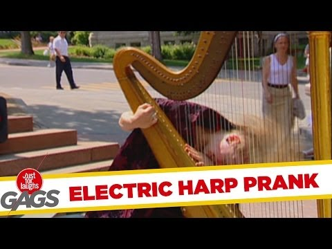 Electric Guitharp Insanity