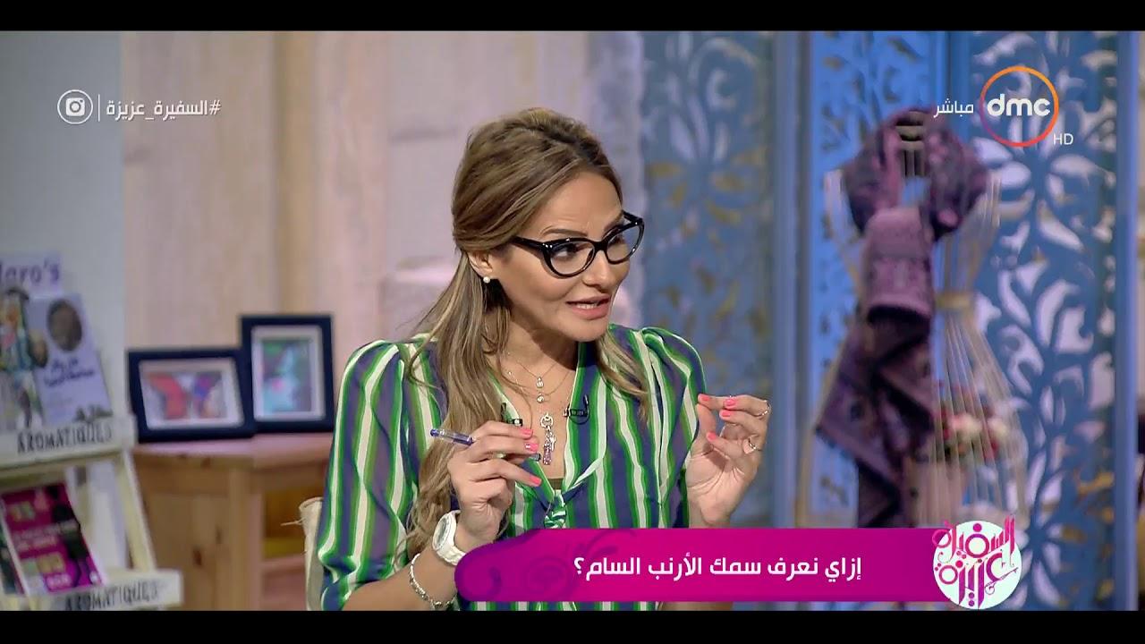 السفيرة عزيزة - ازاي نعرف سمك الأرنب السام ؟