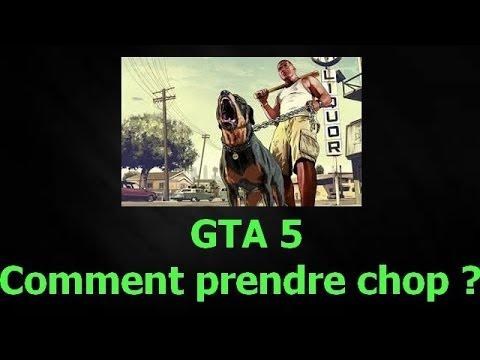 comment prendre chop gta 5