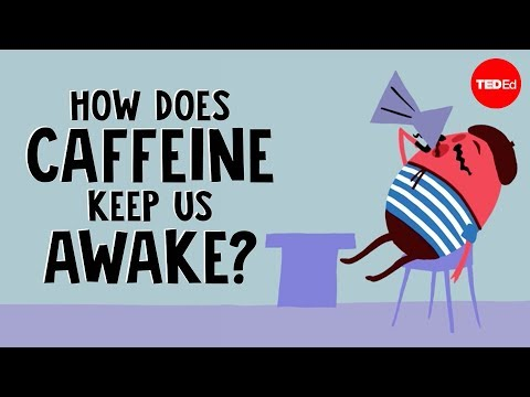 How Does Caffeine Keep Us Awake