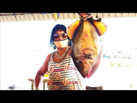 CUTTING AND SKINNING A TITAN TRIGGER FISH видео