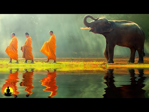 🔴 Tibetan Meditation Music 24/7, Relaxing Music, Healing Music, Chakra, Yoga, Sleep, Study, Relax