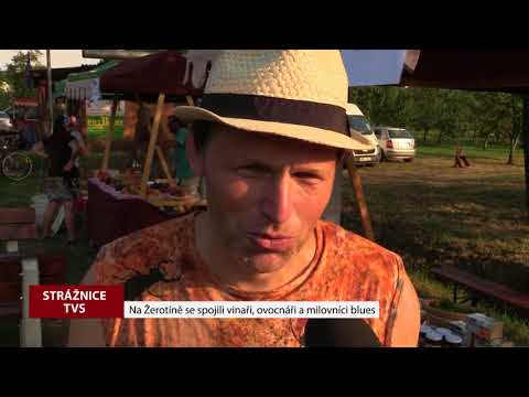 TVS: Strážnice - Den vína a ovoce na Žerotíně