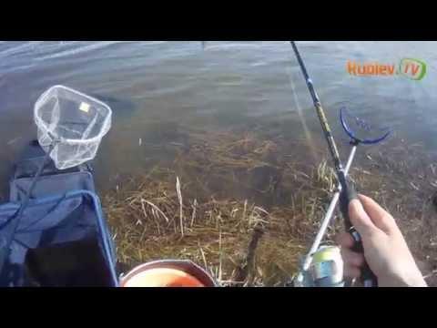 крупин рыбалка на оке