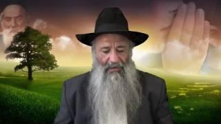 Halaha N°2 LACHON ARA