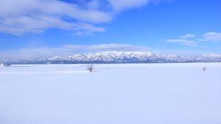 冬春夏秋冬〜同じ場所、同じ景色。ただ季節だけが巡る。北海道の四季を体感する3分間