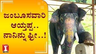 Video ಜಂಬೂಸವಾರಿ ಆಯ್ತಪ್ಪ..ನಾನಿನ್ನು ಫ್ರೀ..! | Elephant Arjuna in relax mood MP3, 3GP, MP4, WEBM, AVI, FLV Oktober 2018