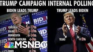 Video President Donald Trump Campaign Fires Pollsters Over Bad Numbers   Morning Joe   MSNBC MP3, 3GP, MP4, WEBM, AVI, FLV Juni 2019