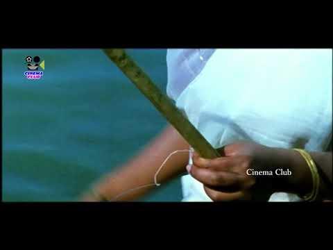Amala paul Hot honeymoon In Boat   Neti Charitra Movie   South Actress Amala Paul Romantic Scene