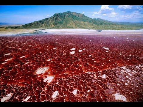 il lago che pietrifica le vittime! scoperta incredibile!