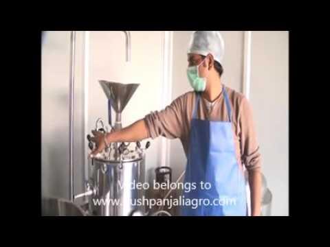 Soya Milk Machine By Pushpanjali Agro Industry