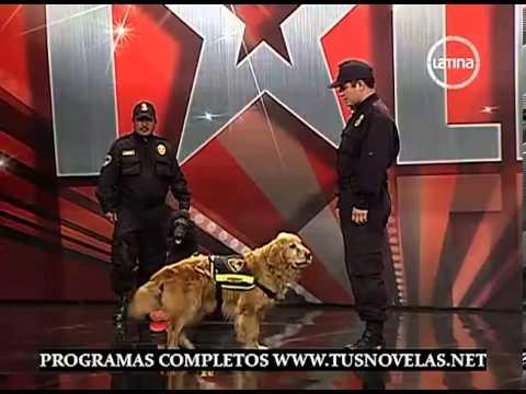PERU TIENE TALENTO PROGRAMA 6 SABADO 20 DE OCTUBRE 2012 1/4