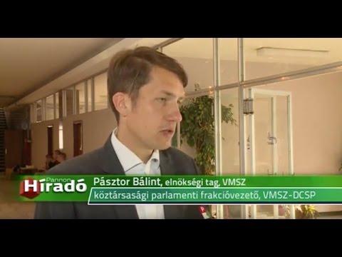 VMSZ: A magyarság szempontjából is fontos, hogy Aleksandar Vučić nyerjen-cover