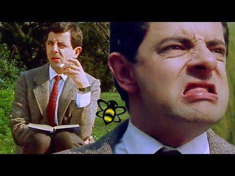 Bumble BEAN | Mr Bean Full Episodes | Mr Bean Official