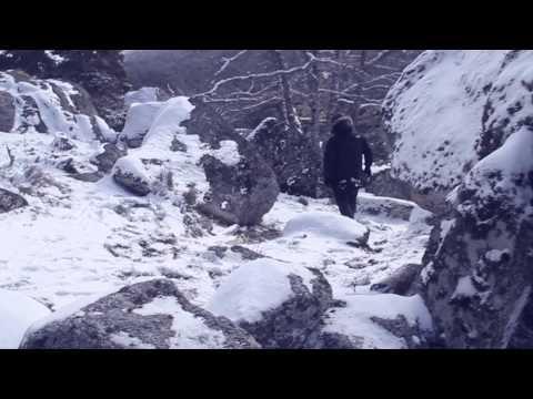 """D. Rodriguez (Ratas Inestables) – """"Línea de meta"""" [Videoclip]"""