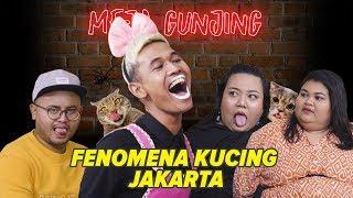 Video [MEJA GUNJING] - FENOMENA KUCING JAKARTA MP3, 3GP, MP4, WEBM, AVI, FLV Januari 2019