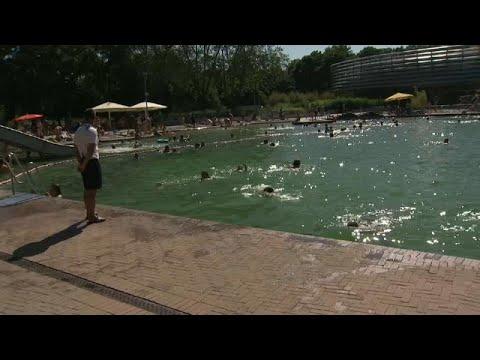 Η ζέστη ανεβάζει την επιθετικότητα στις πισίνες της Γερμανίας…