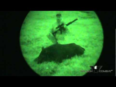 Night Vision Hog Hunting with Bill Wilson