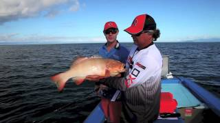 How to fish inshore with soft plastics