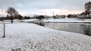 Stanthorpe Australia  city pictures gallery : Thick Snow Blankets Stanthorpe, Queensland. Australia.