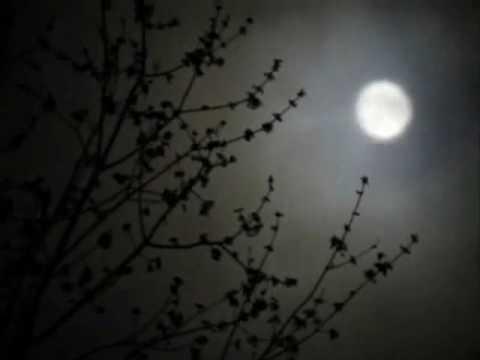 Tekst piosenki Peter Gabriel - Flume po polsku