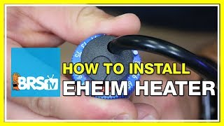How to install and calibrate Eheim Jager aquarium heaters – BRStv How-To