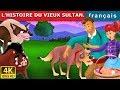 L'HISTOIRE DU VIEUX SULTAN | Histoire Pour S'endormir | 4K UHD | Contes De Fées Français