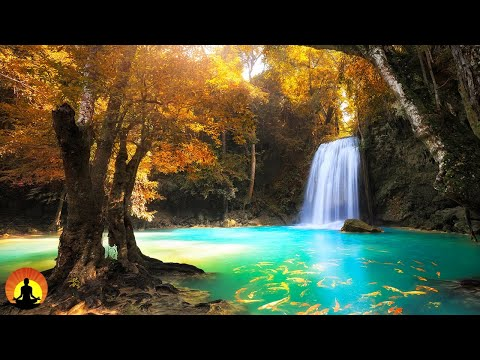 🔴 Relaxing Music 24/7, Meditation, Sleep Music, Yoga, Spa, Calm Music, Relaxing Music, Study Music