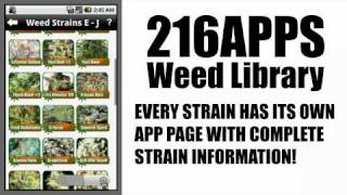Marijuana Strains YouTube video