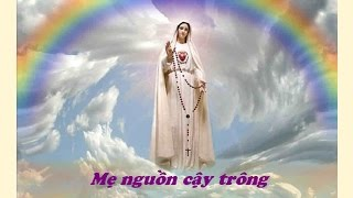 Download Lagu Me Nguon Cay Trong Mp3