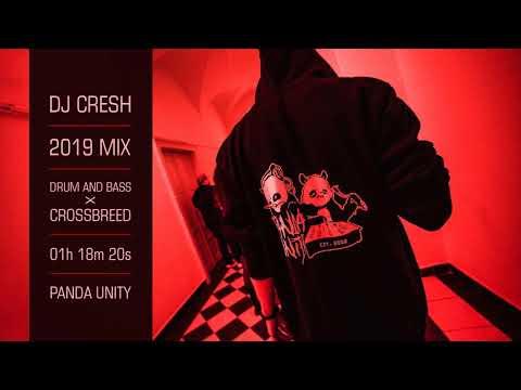 DJ CRESH - 2019 MIX (DNB X CROSSBREED)