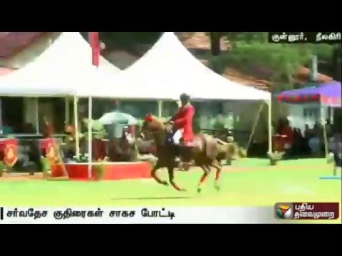 International-horse-show-at-Coonoor