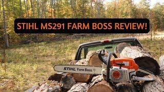 5. STIHL MS291 FARM BOSS WOOD CUTTING ACTION!