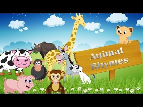 rhymes - A collection of 15 of the best nursery rhymes on animals. Please click on the times below to watch your favourite rhymes. Old Macdonald had a farm 00:07 Baa ...