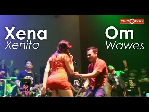 Video Heboh Xena xenita Vs Om Wawes ilang roso download in MP3, 3GP, MP4, WEBM, AVI, FLV January 2017