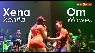 Video Heboh Xena xenita Vs Om Wawes ilang roso MP3, 3GP, MP4, WEBM, AVI, FLV September 2018