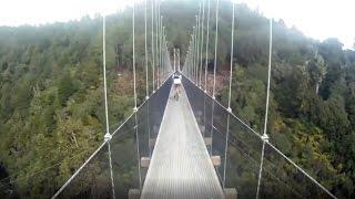 Taumarunui New Zealand  city photo : EPIC CYCLE ADVENTURES - Timber Trail, Taumarunui, New Zealand 2013