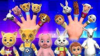 Finger Family Songs - 3D Animals Finger Family Kids Nursery Rhymes & Songs for Children