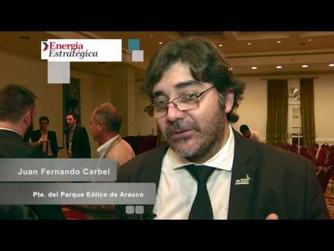 """Fernando Carbel sobre las energías renovables: """"el último día de la licitación los inversores se bajaban"""""""