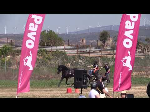 I Fase Cto Navarro Enganches Obstáculos 240319 Video 8
