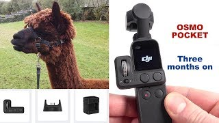 DJI Osmo Pocket - A 3-month-in REVIEW