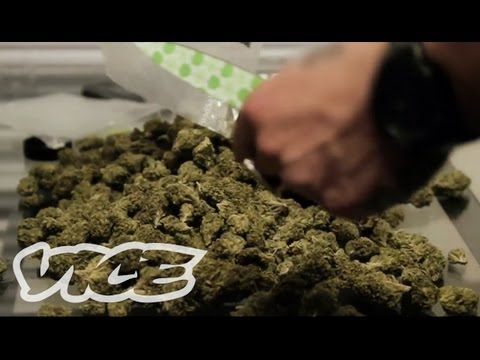 VICE videos - Ever wonder how to sell $100000 worth of drugs in a week? We learned the secrets of a drug dealer in NYC - a man who will deliver any substance you want, 24...