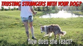 GIVING MY DOG TO A STRANGER?! by Maddie Smith