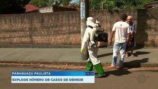 Com 480 casos confirmados, Paraguaçu Paulista realiza ações para combater a dengue