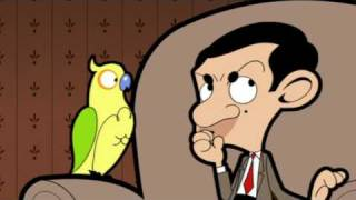 MrBean - Mr Bean - Pet Parrot