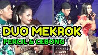 Video PERCIL Cs - 21 Juli 2018 - Guyon Maton - Babadan Ngancar Kediri MP3, 3GP, MP4, WEBM, AVI, FLV Juli 2018