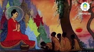 Những Lời Phật Dạy  Phàm Làm Việc Gì Trước Phải Xét Kỹ Đến Hậu Quả Của Nó Mời các bạn và quý phật tử cùng lắng nghe pháp âm - Nghề Phụ Làm Giàu Sai Cách - Nhân Quả Phụ Giải Lương Hoàng Sám T2 Phần 2  -  , chúc các bạn và quý phật tử luôn hoan hỷ và an lạclike và đăng ký kênh để theo dõi video mới từ MP3 Phật GiáoNAM MÔ A DI ĐÀ PHẬT