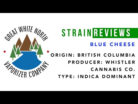 Canadian Legal Cannabis Strain Review | Blue Cheese | Whistler C C | Great White North Vaporizer Co.